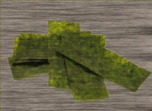 omega-3 seaweed
