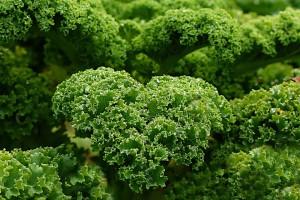 kale vegan