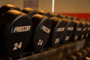 protein bulking